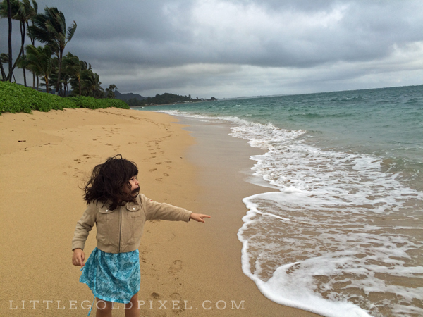 Windward Oahu Travel Guide • Little Gold PIxel