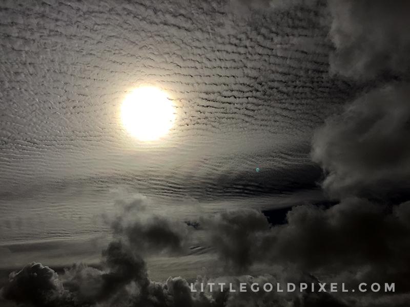 Weekly Pixels 2015 • No 8 • littlegoldpixel.com