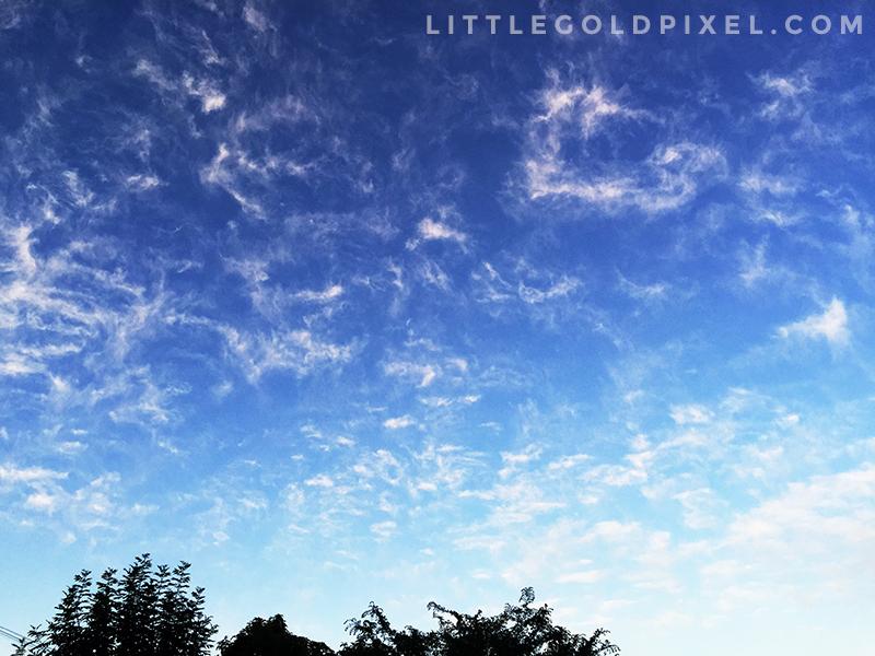 Weekly Pixels #17 • Weekly Photo Project for 2015 • littlegoldpixel.com