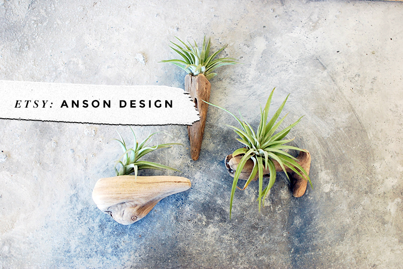 8 Awesome Air Plant Hangers • Little Gold Pixel • Anson Design