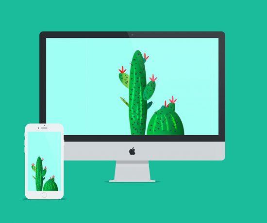cactus_wallpaper_littlegoldpixel6