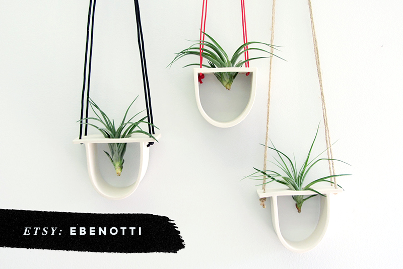 8 Awesome Air Plant Hangers • Little Gold Pixel • Ebenotti