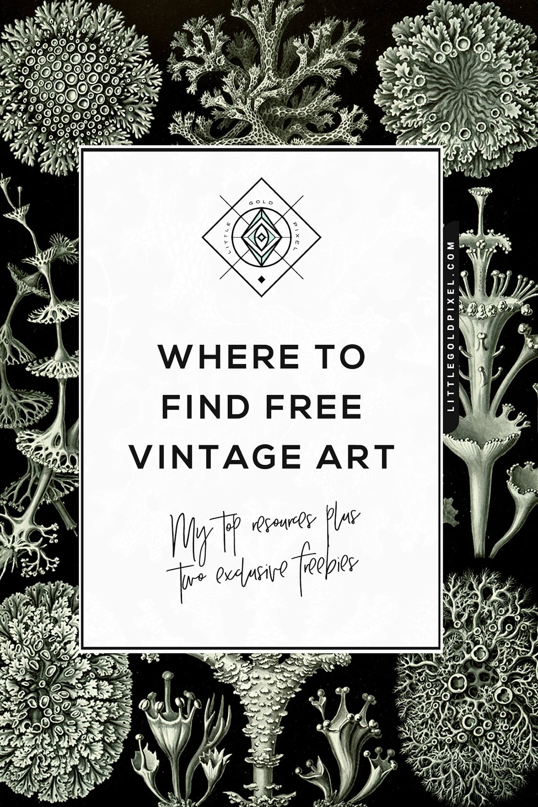 photograph about Free Vintage Printable titled No cost Basic Artwork Exactly where towards Track down it + One of a kind Freebies