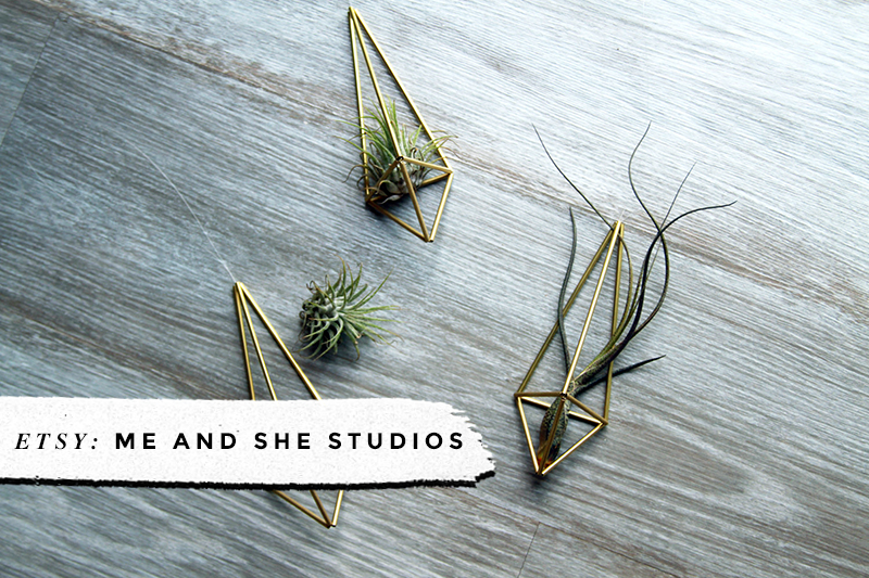 Me and She Studios • 8 Awesome Air Plant Hangers • Little Gold Pixel