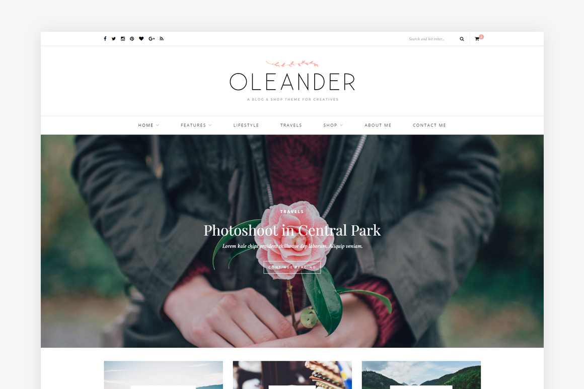 Top 5 Design Tools • Little Gold Pixel • Oleander Theme