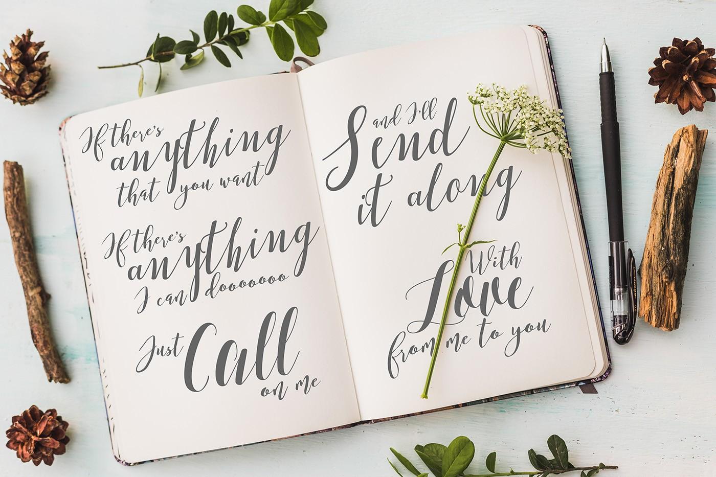 The New Romantic: 14 Amazing Script Fonts •Little Gold Pixel