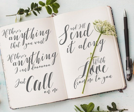The New Romantic: 14 Amazing Script Fonts • Little Gold Pixel