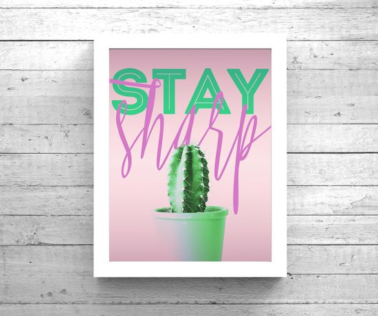 staysharpnu_frame1