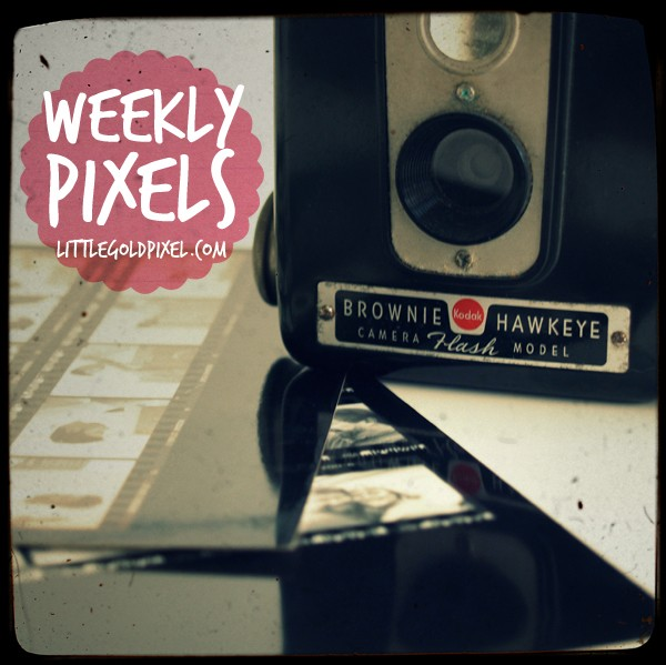 Weekly Pixels • Weekly Photo Project for 2015 • littlegoldpixel.com
